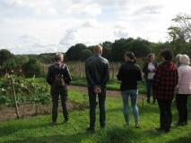 Rondwandeling Lierdal: uitleg in de Kuilse Tuin