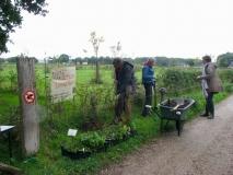 Inheemse plantjes komen langs de heg te staan