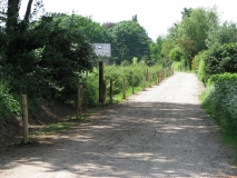 Heg langs Lierseweg (zandweg)
