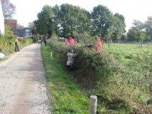 Heggen buigen langs Lierseweg