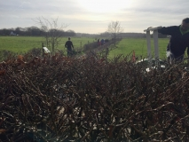 Houtsnippers opbrengen op Vuurvogeldwarspad februari 2020